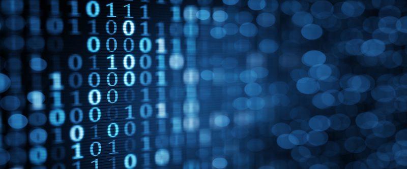 Relevante Daten in Insolvenzen